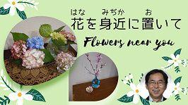 Flowers near you