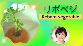 Reborn vegetables