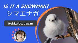 Is it a snowman?
