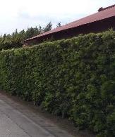 Kakine Japanese fences