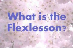 online group flexlesson